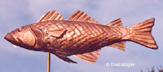 Go to Fish Weathervane page