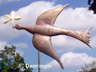 Go to Dove of Peace Weathervane Page